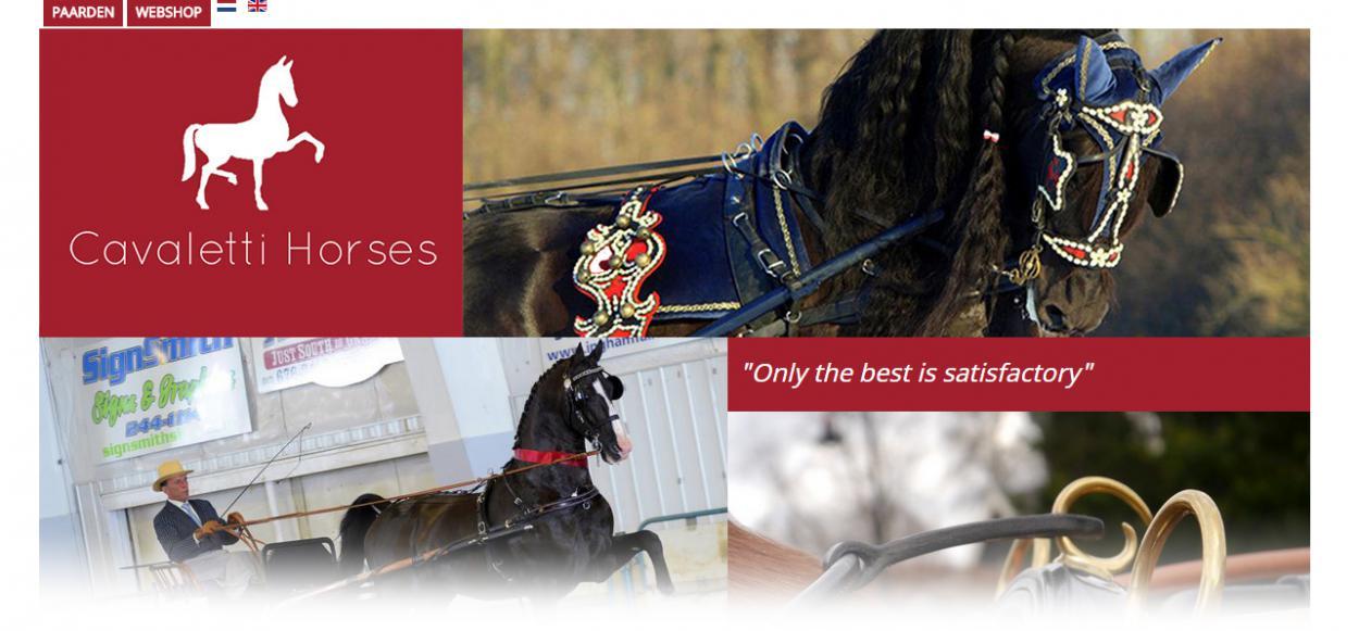 Cavaletti Horses